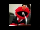 Elmo Speaks Out About Sex Scandal: Press Conference