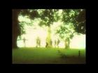 Edward Sharpe & The Magnetic Zeros - Home (lyrics)