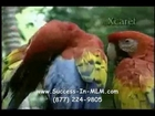 Grand Xcarat | Grand Xcaret | All Inclusive Trip to Cancun